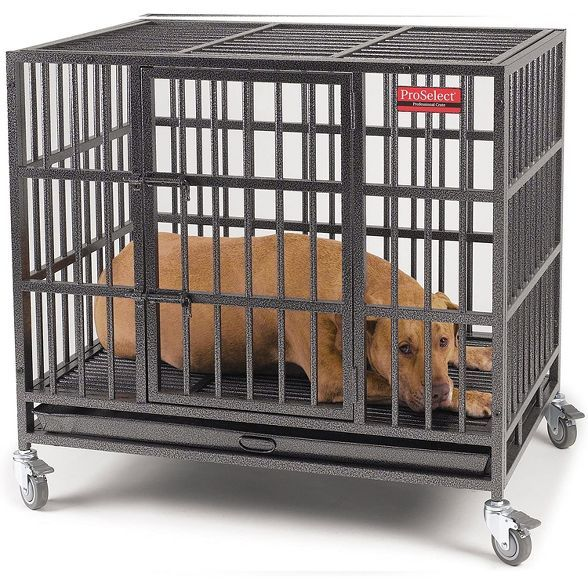 Pet Edge Zw179 37 Indestructible Steel Crate Dog Cat Small Animal Medium Wheeled Pet Cage With Tray Black In 2021 Dog Cages Pet Cage Medium Dog Crate