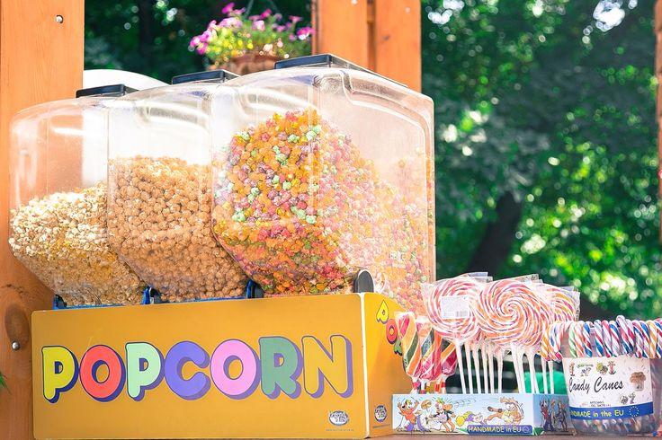 Чудесные сладости зоопарка