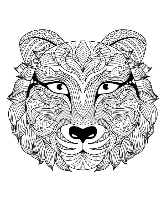 Tiger Coloring Pages In 2020 Adult Coloring Pages Animal