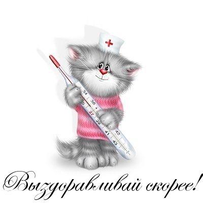 Картинки с надписью котик выздоравливай, приколы про