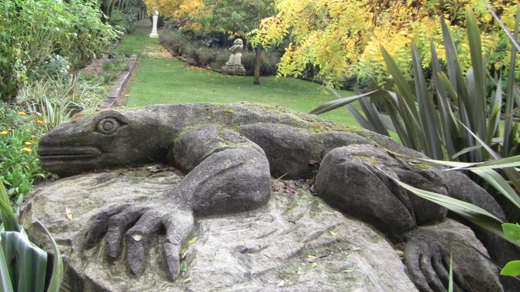 Lazy limestone Toatara (lizard)  sunning it at Rockvale gardens.