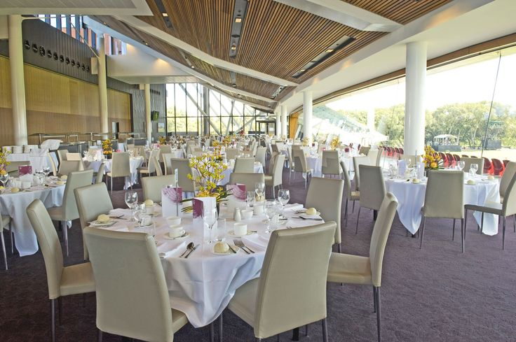 Adelaide Oval Function Room | CONCEPT COLLECTIONS | Adelaide Chair in Taupe