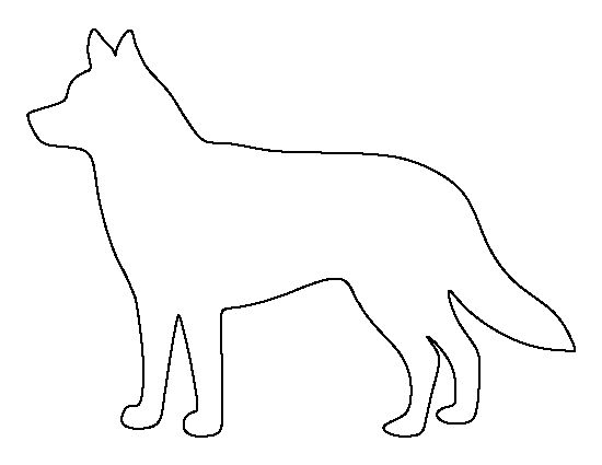 42 Best Images About Animal Outlines Templates On Pinterest