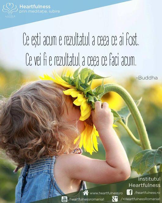 Ce ești acum e rezultatul a ceea ce ai fost. Ce vei fi e rezultatul a ceea ce faci acum. ~Buddha www.heartfulness.ro #cunoaste_cu_inima #meditatia_heartfulness #hfnro Meditatia Heartfulness Romania