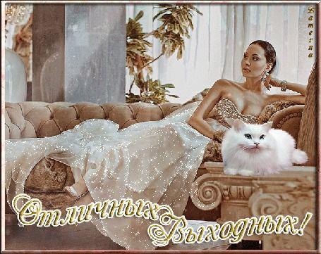 Девушка в золотом вечернем платье на диване рядом с белым котом в интерьере комнаты (Отличных Выходных!) Lamerna