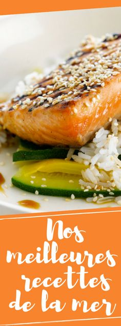 Découvrez les poissons, coquillages et crustacés : le meilleur de la cuisine de la mer