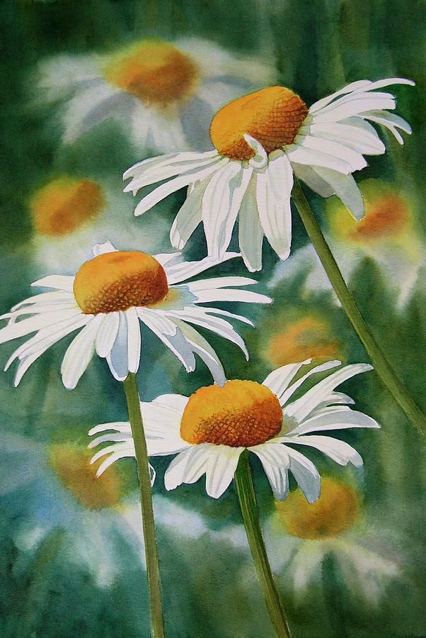 Three Wild Daisies Painting by Sharon Freeman.  This is how to succeed at depth of field