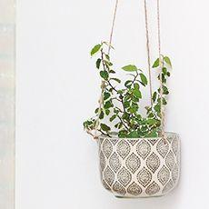 Ria planter