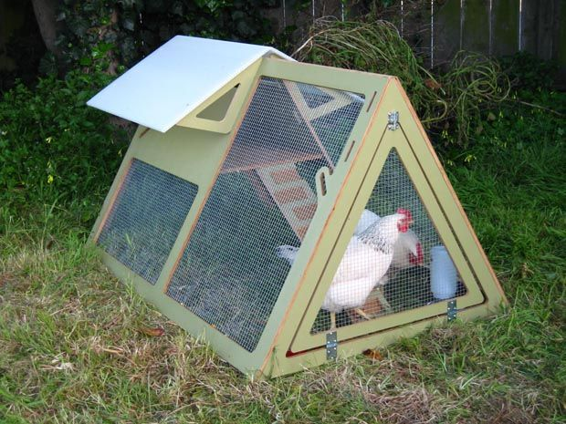 urban chicken coop .