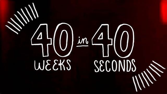 40 Weeks in 40 Seconds - the stop motion story of our families pregnancy in 40 seconds!
