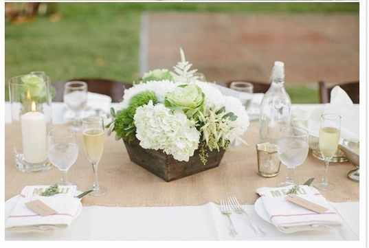 The look I'm going for. Will have cream tablecloths, burlap runners, wood boxes filled with hen and chick succulents and also small candle votives. Each place setting will have a favor, which will be a packet of seeds.