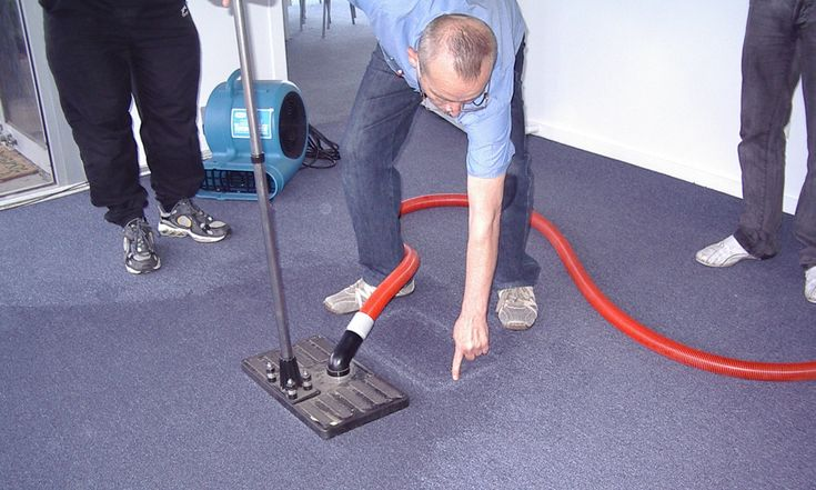 One of the things that are commonly damaged by water is our homes. Carpeted homes are damaged even more because the carpet tends to soak up the water. Here we will look at a few ways on how you can deal with a water damaged carpet in Melbourne.