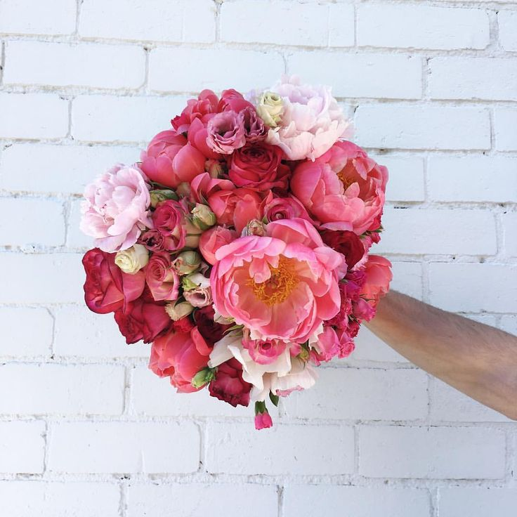 2,926 Followers, 494 Following, 428 Posts - See Instagram photos and videos from Flowers By Brett Matthew John (@flowersbybrettmatthewjohn)