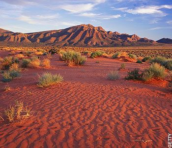 The Flinders Ranges: This Otherworldy outback - Telegraph _ I had a great 'mars' expedition here in 2008