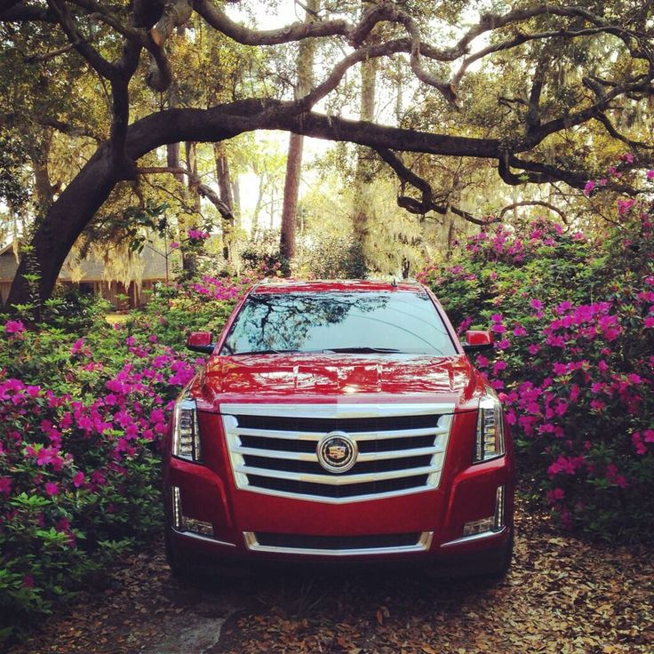 Mother Nature knows how to accentuate the beauty of the 2015 #Cadillac #Escalade. LOVE the RED!