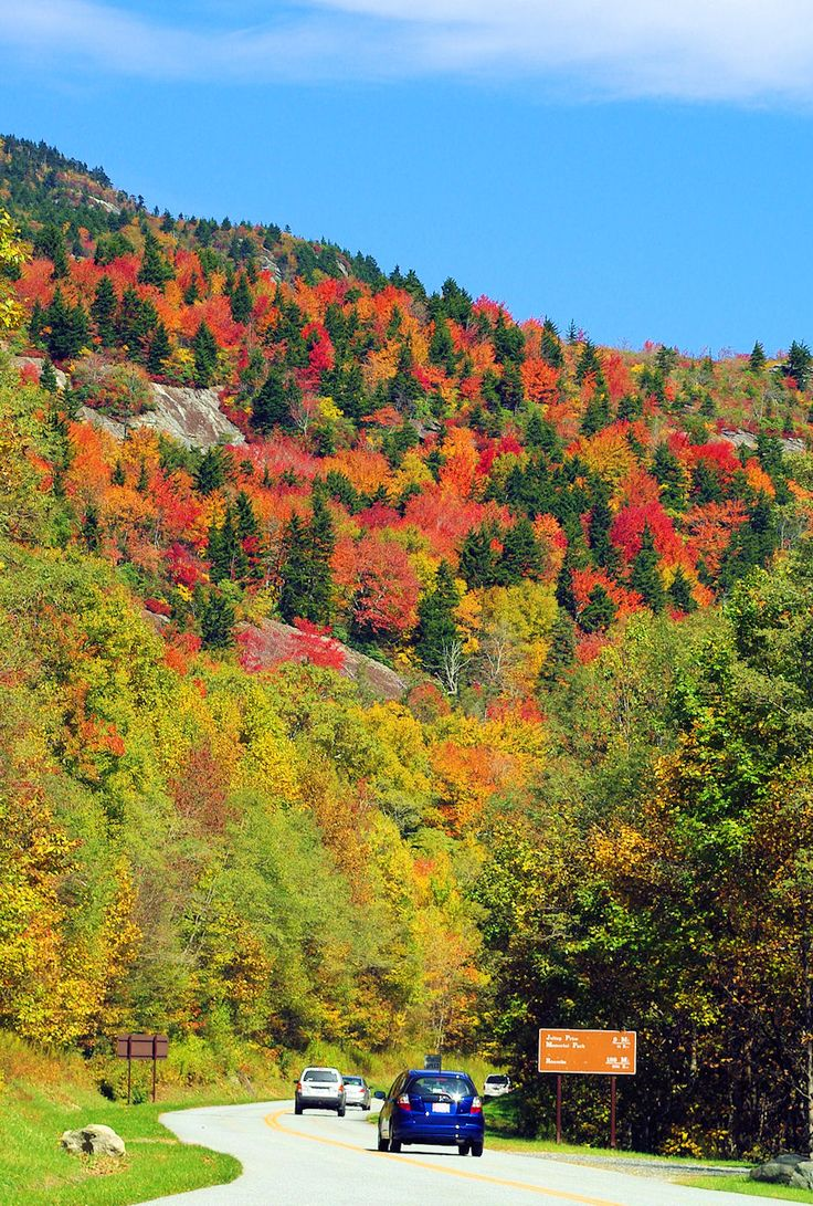 Fall Color Along The Blue Ridge Parkway North Of Asheville, NC (October)