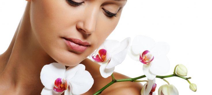 Arriva anche da noi lo shopping online, per voi tantissimi prodotti di bellezza e tantissime offerte dal make up al fitness!!