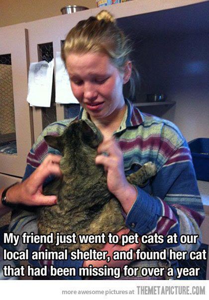 I'm not crying, my eyes are just a little sweaty… #animal #pet #shelter #rescue