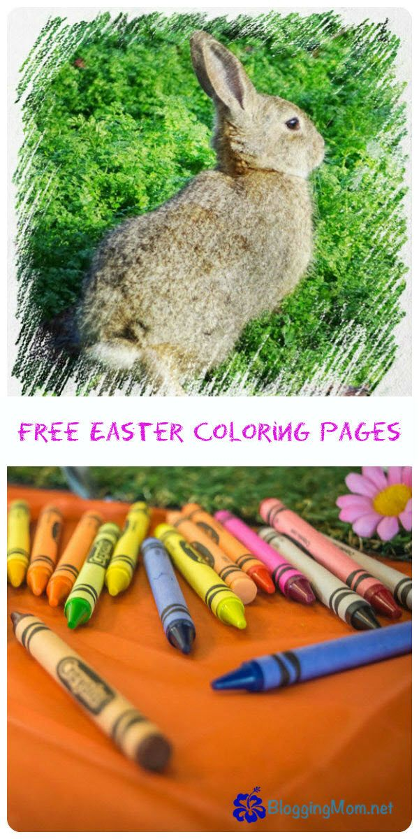 I have posted a nice collection of free Easter coloring pages that include pictures of Easter bunnies, Easter eggs, Easter baskets and more!