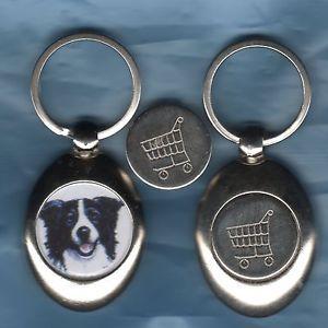 BORDER-COLLIE-TROLLEY-COIN-KEYRING-DOG-MDK850