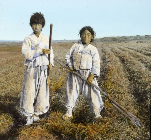 Korean boys gathering straw, circa 1925