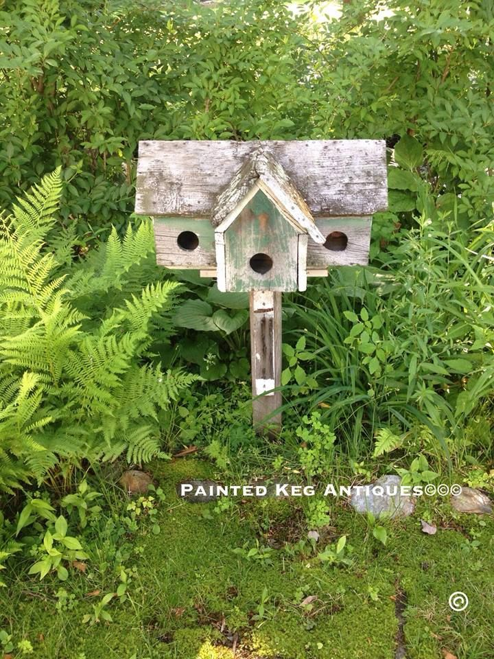 769 best images about birds birdhouses tutorial on for Different types of birdhouses