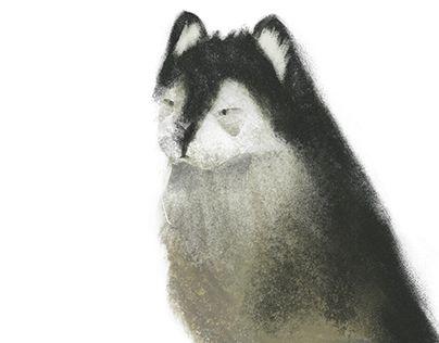 "Check out new work on my @Behance portfolio: ""Alaskan Malamute"" http://be.net/gallery/35651523/Alaskan-Malamute"