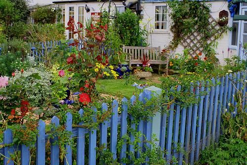 great fence: Cottages Styles, Picket Fences, Fences Idea, Cottages Gardens, Gardens Fences, Gardens Idea, Front Yard, Pale, Blue Fences