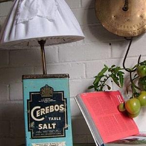 cerebos salt: Cerebo Salts
