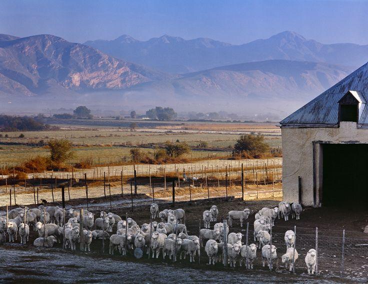Little Karoo - Rooiberg Mountain — Obie Oberholzer