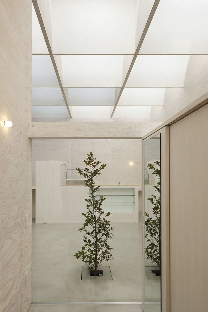 Takeshi Hosaka: Daylight House