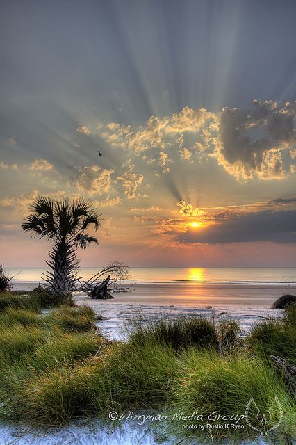 Hunting Island, South Carolina, USA