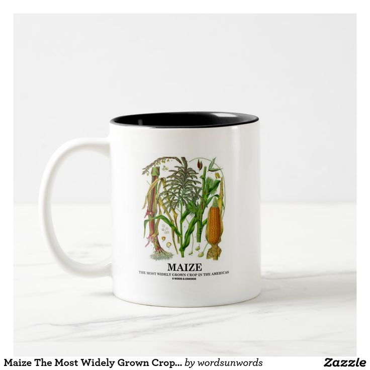"""Maize The Most Widely Grown Crop In The Americas #maize #vegetable #americas #mostwidelygrowncrop #corn #crop #harvest #plant #wordsandunwords #foodforthought Here's a mug featuring """"Maize The Most Widely Grown Crop In The Americas""""."""