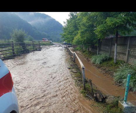 Copiii care merg la școala generală din Fărășești, Timiș, au avut vacanță forțată joi. După ce peste noapte în sat s-a abătut o viitură puternică, aluviunile transportate de apă au blocat accesul în școală. Prin urmare, copiii au primit zi liberă până vin...
