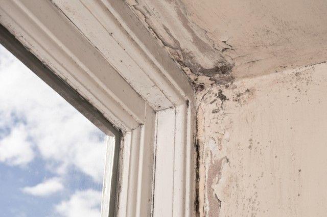 Come contrastare ed eliminare l'umidità in casa con i rimedi naturali