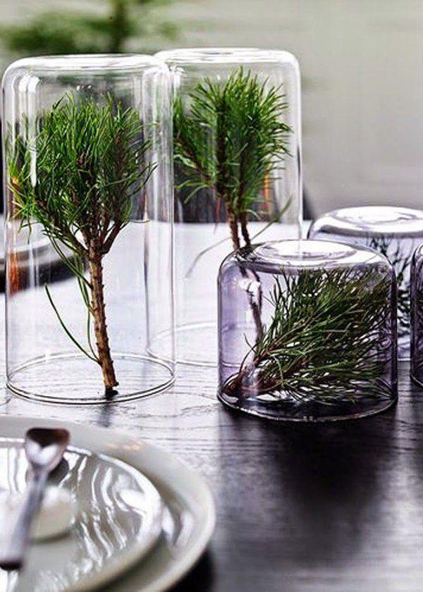 La branche de sapin comme objet déco , christmas decoration
