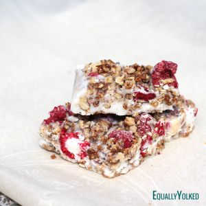 #Paleo Desserts - Coconut Raspberry Energy Bars