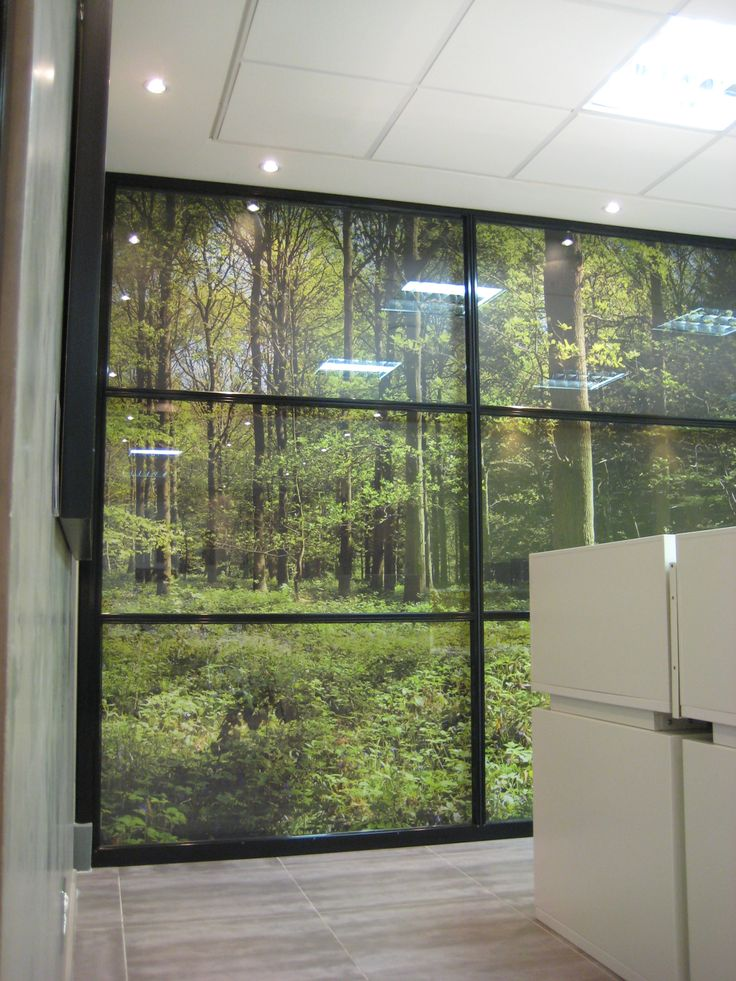 Graphic decal on panels: Forest window with black frame.