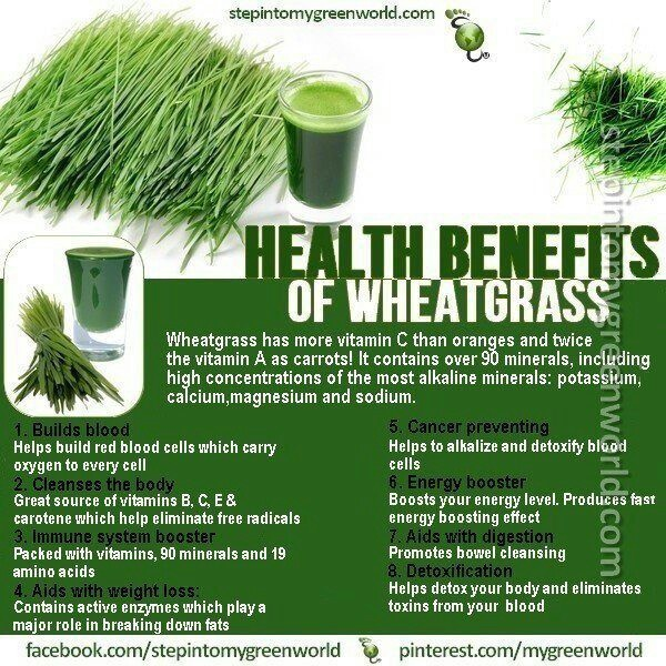 Can I Buy Wheatgrass At Whole Foods
