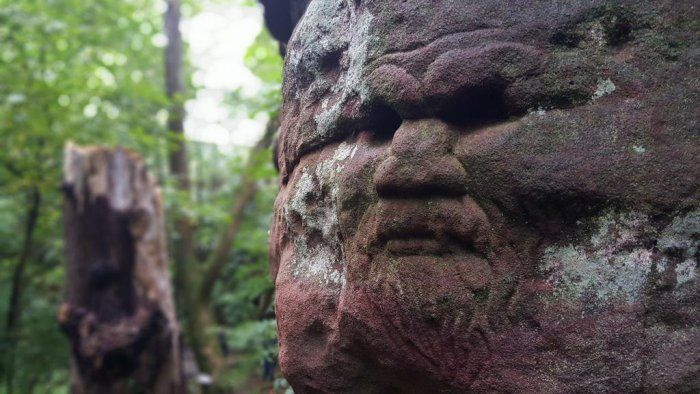 Dunino Den: Mysterious Ancient Site In Scotland With Enigmatic Faces And Symbols Carved In Rocks