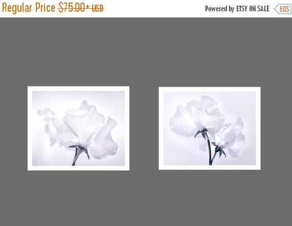 SALE 20% OFF 2 Print Set - Reduction 15 Percent - Sweetpeas - DUO Set - 2 Photograph Set - Giclee Prints
