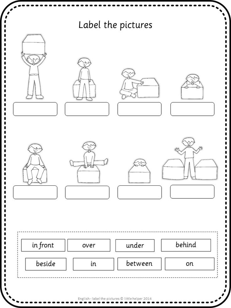 Worksheet Preposition Next To Kindergarten Worksheet best 25 prepositions worksheets ideas on pinterest esl label the pictures kindergarten worksheetspositional words kindergartenprepositions