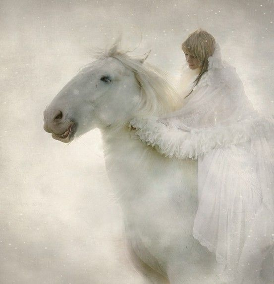 * *: Angel, Snow Queen, Ghosts Rider, Winter, Dreams, Fantasy Art, Beautiful, White Horses, Snow White