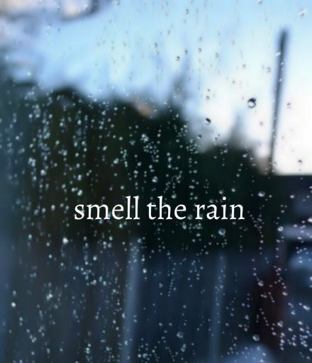 I love the smell of rain