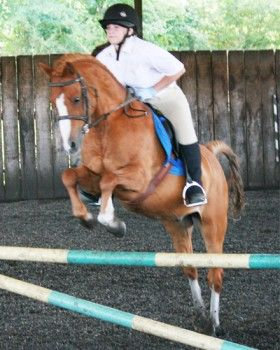 Are you looking for an activity outside your professional life which will make you both relaxed mentally as well as agile physically? Try #horseriding! And what best to go to for an incredible experience in #horseriding in #NorthLondon than #HighBeechRidingSchool? We have the best #trainer in town to make your training and riding experience both safe and enjoyable.