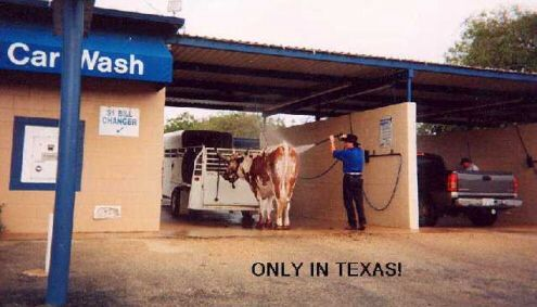 Can You Wash Your Car In Your Driveway In Texas