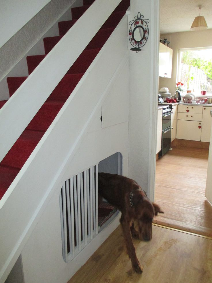 Bed Under Stairs Dog Stairs.