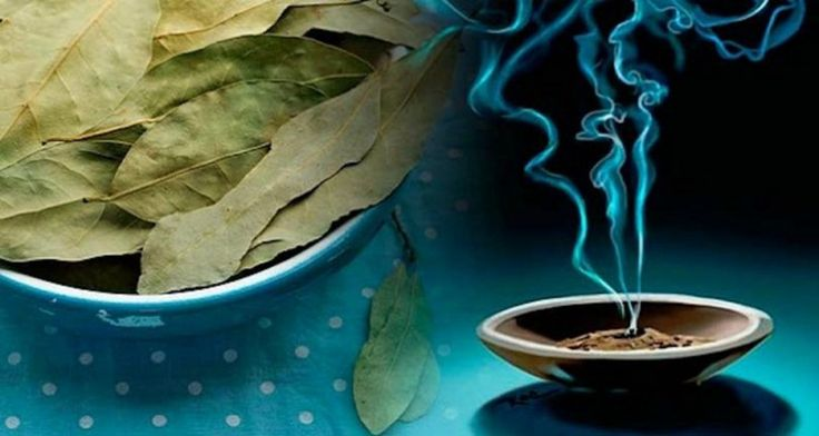 Relieve Stress and Anxiety by Burning Bay Leaves in Your Home! Here Is How to Do It!