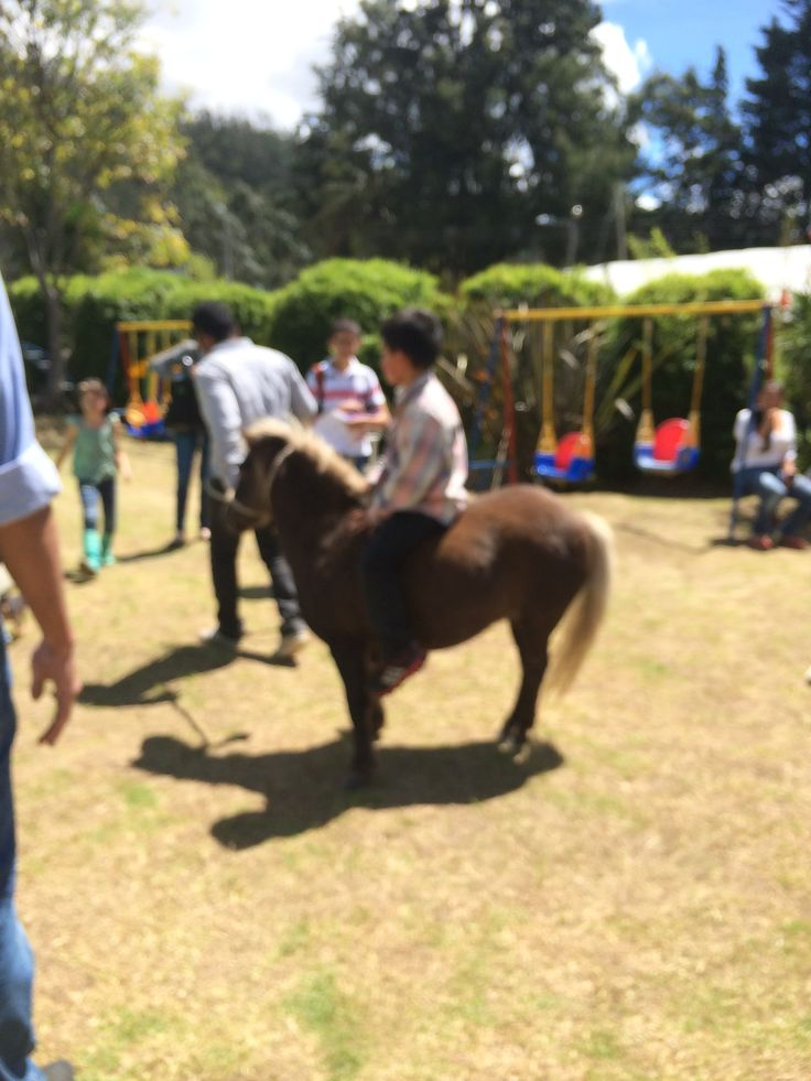 Paseo en ponny...