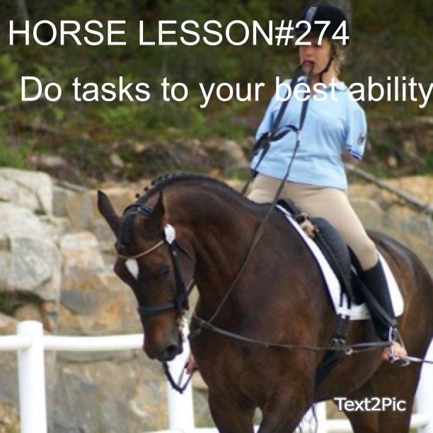 17 Best images about Horse lessons !! on Pinterest ... Horse Lessons Tumblr